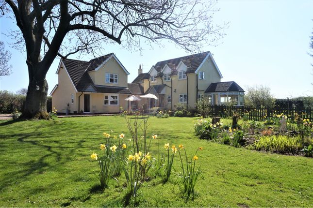 Thumbnail Detached house for sale in High Street, North Thorseby