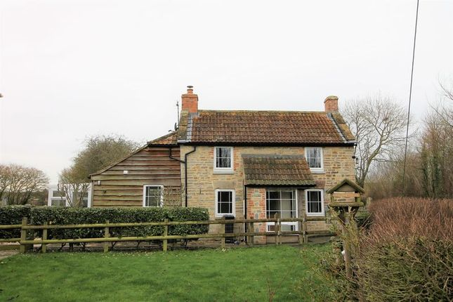Thumbnail Cottage to rent in Low Ham, Langport