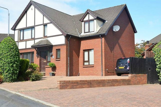 Thumbnail Detached house for sale in Highfields Court, Lisburn, County Antrim