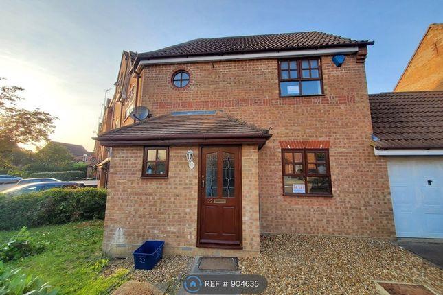 Thumbnail Semi-detached house to rent in Grace Avenue, Oldbrook, Milton Keynes