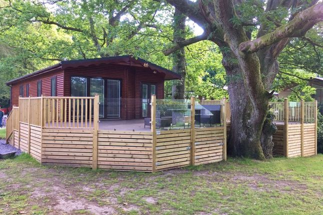 Thumbnail Mobile/park home for sale in White Cross Bay, Ambleside Road, Windermere