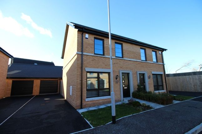 Thumbnail Semi-detached house to rent in Ballantine Lane, Lisburn