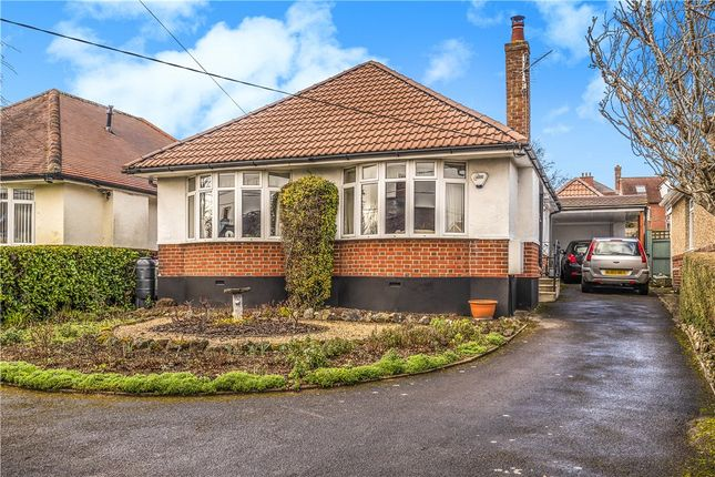 Thumbnail Detached bungalow for sale in Salisbury Road, Blandford Forum