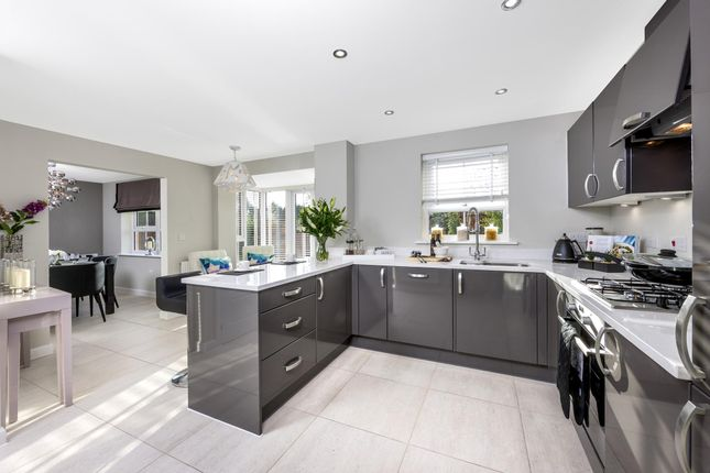 """Thumbnail Detached house for sale in """"Cambridge"""" at Dorman Avenue North, Aylesham, Canterbury"""