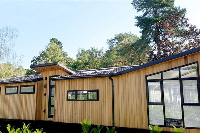 Thumbnail Bungalow for sale in Lone Pine Park, Ferndown, Dorset