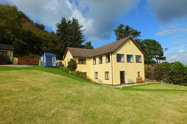 Thumbnail Detached house for sale in Old Lyme Road, Charmouth, Bridport