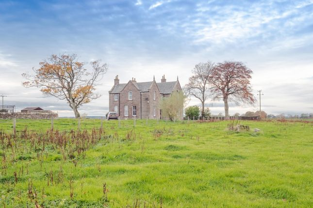 Thumbnail Detached house to rent in South Port, Union Street, Brechin