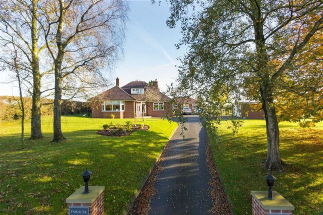 Thumbnail Detached bungalow for sale in Cumeragh Lane, Whittingham, Preston