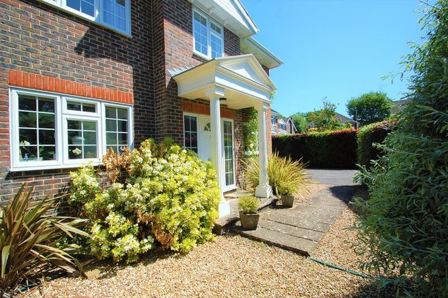 Thumbnail Detached house for sale in Montague Gardens, Petersfield