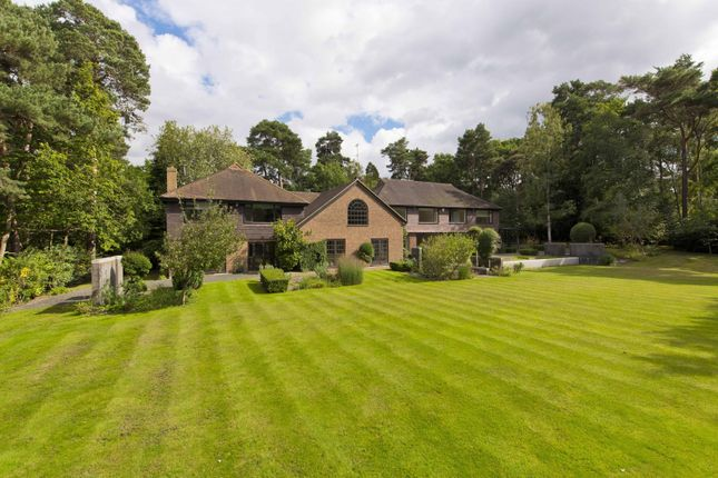 Thumbnail Detached house for sale in West Road, St. Georges Hill, Weybridge