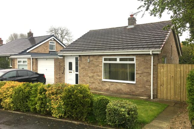 Thumbnail Semi-detached bungalow to rent in The Parklands, Ingleby Arncliffe, Northallerton