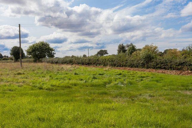 Thumbnail Land for sale in Daffy Green, Shipdham, Thetford