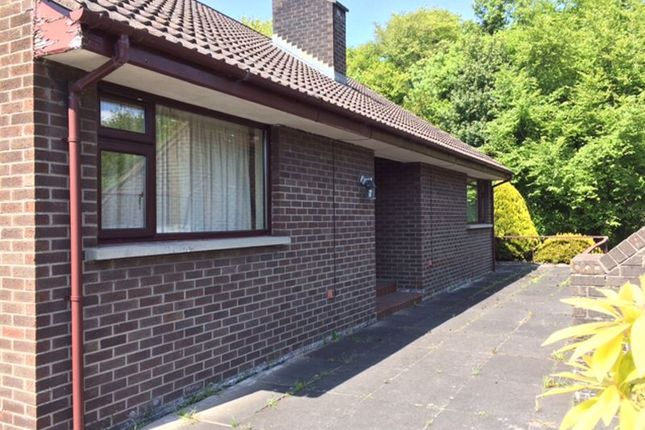 Thumbnail Detached bungalow for sale in Basin View Terrace, Dublin Road, Newry