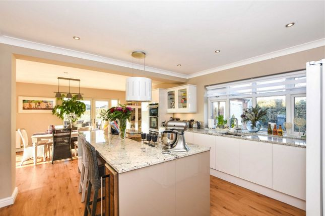 Thumbnail Detached house for sale in Escrick Road, Wheldrake, York