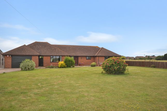 Thumbnail Detached bungalow for sale in Dungeness Road, Lydd, Romney Marsh, Kent