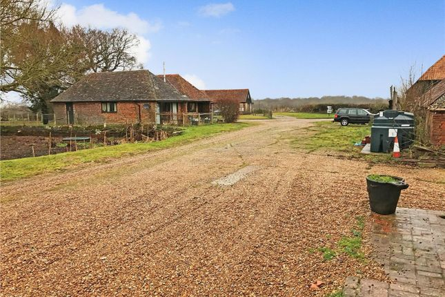 Thumbnail Detached bungalow to rent in Whitebread Lane, Beckley, Rye