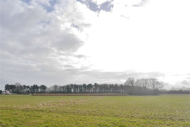 Thumbnail Land for sale in Elvington Lane, Elvington, York