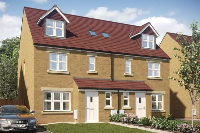 "Thumbnail Terraced house for sale in ""The Penshaw"" at Darlington Road, Northallerton"