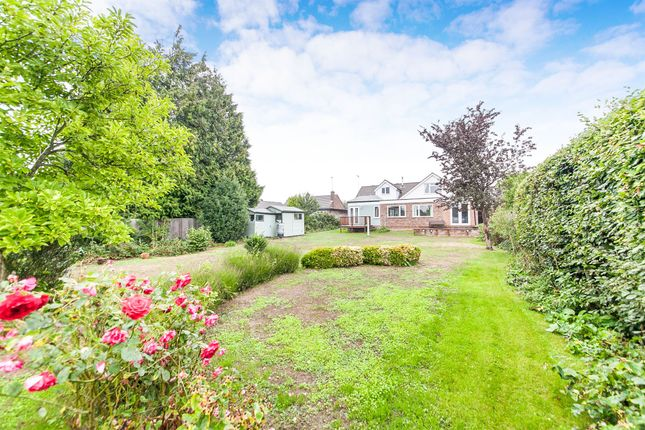 Thumbnail Detached bungalow for sale in Henley Road, Ipswich