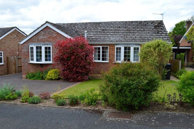 Thumbnail Bungalow to rent in Lytton Road, Taverham, Norwich
