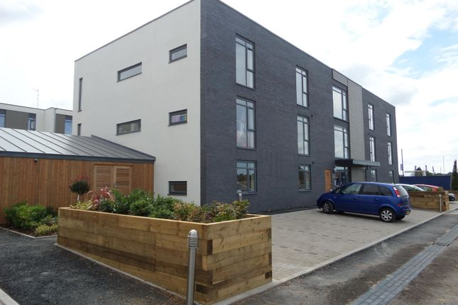 Thumbnail Flat to rent in Cunningham Court, Taunton