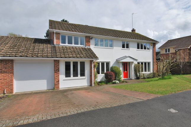 Thumbnail Link-detached house to rent in Blandy Road, Henley-On-Thames