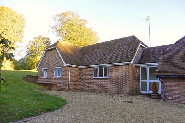 Thumbnail Bungalow to rent in Winterbourne Road, Boxford