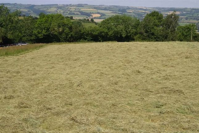 Thumbnail Land for sale in The Lyde, Bromlow, Minsterley, Shrewsbury