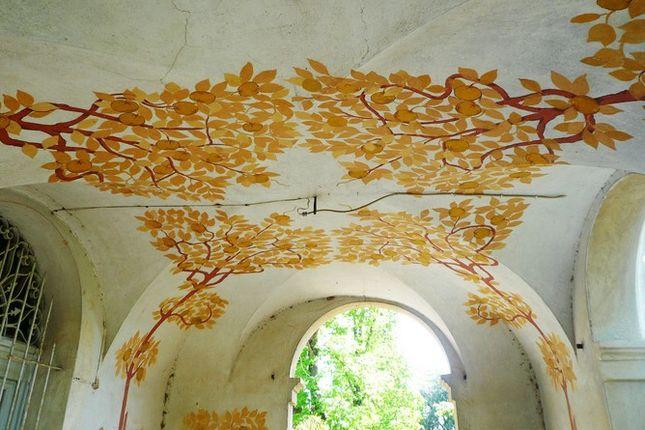 Painted Ceiling of Villa Bigi, Pozzuolo, Umbria