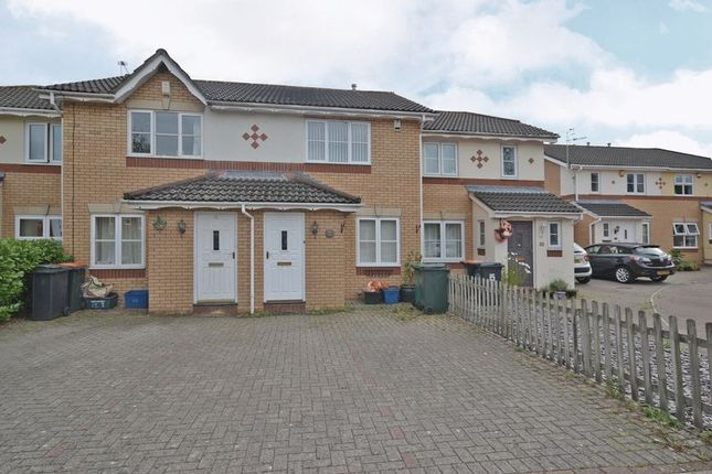 Thumbnail Terraced house to rent in Modern House, Spartan Close, Langstone