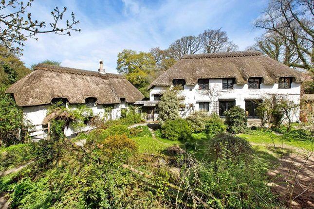 Thumbnail Semi-detached house for sale in Higher Ashton, Exeter, Devon