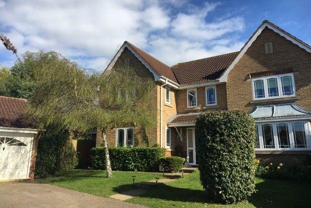 Thumbnail Property to rent in Brunwyn Close, Bury St. Edmunds