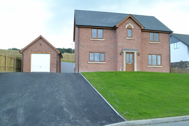 Thumbnail Detached house for sale in Pen Rhos Y Maen, Llanidloes, Powys