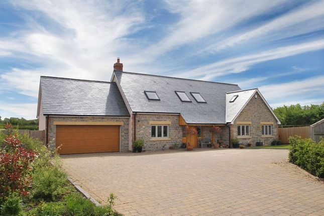 Thumbnail Detached house for sale in Laurels Drive, Barton St. David, Somerton