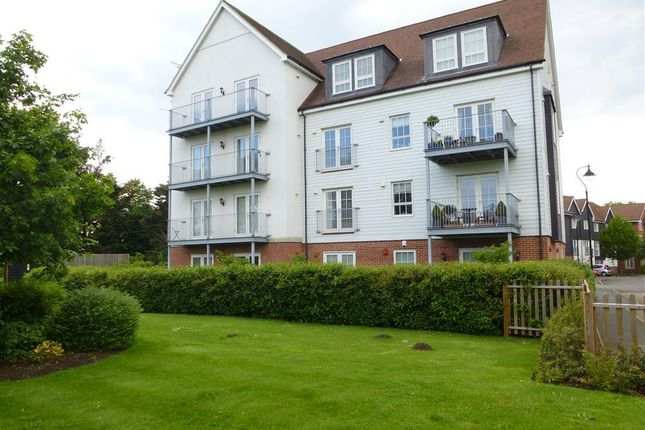 Thumbnail Flat to rent in Ambleside Place, Canterbury