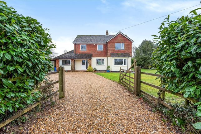 Thumbnail Detached house for sale in Petersfield Road, Monkwood, Alresford, Hampshire