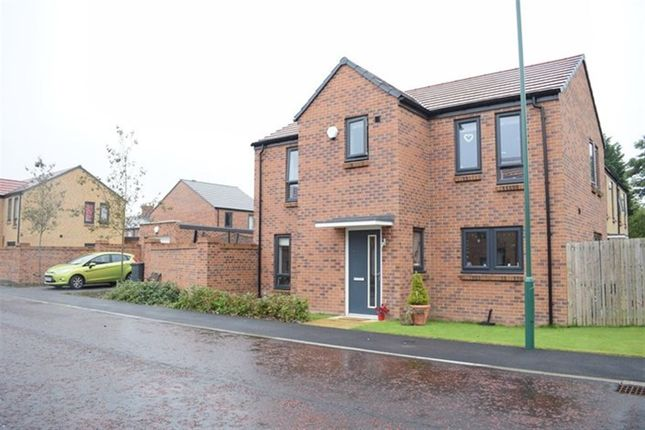 Thumbnail Detached house to rent in Robson Close, South Shields