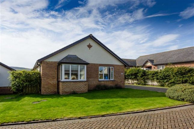 Thumbnail Detached bungalow for sale in Ballatessan Meadow, Peel, Isle Of Man