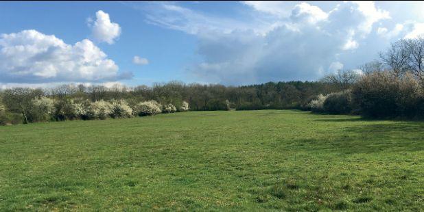 Thumbnail Farm for sale in Wappenham, Towcester