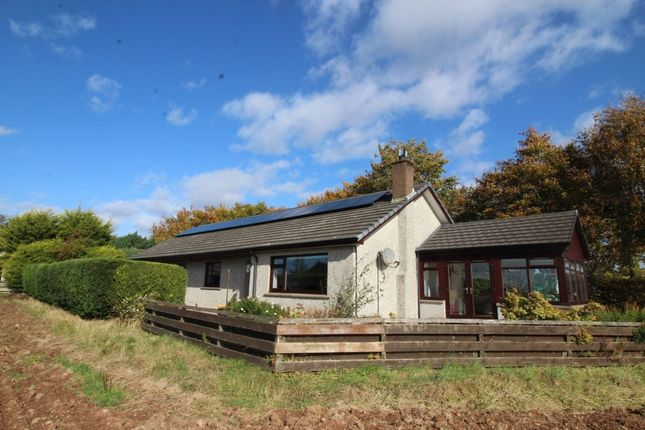 Thumbnail Bungalow for sale in Church Road, Luthermuir, Laurencekirk