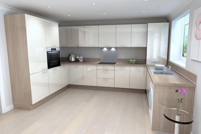 Birch Kitchen Upgrade