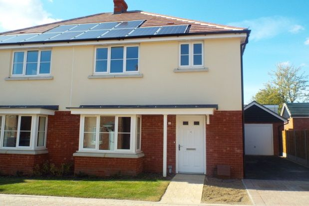 Thumbnail Semi-detached house to rent in Town Farm Place, Ashford