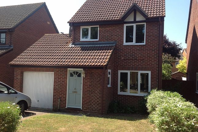 Thumbnail Detached house to rent in Dawson Drift, Kesgrave, Ipswich