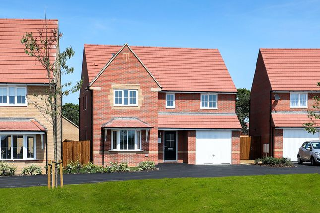"Thumbnail Detached house for sale in ""Halesowen"" at Blackthorn Crescent, Brixworth, Northampton"