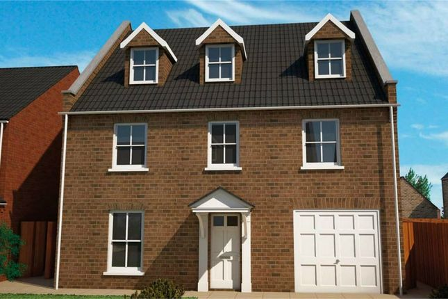 Thumbnail Detached house for sale in Kettle Drive, Newborough, Peterborough