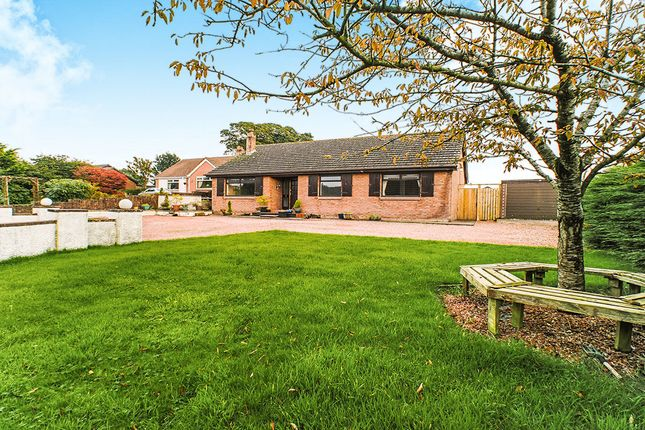 Bungalow to rent in Little Bampton, Wigton