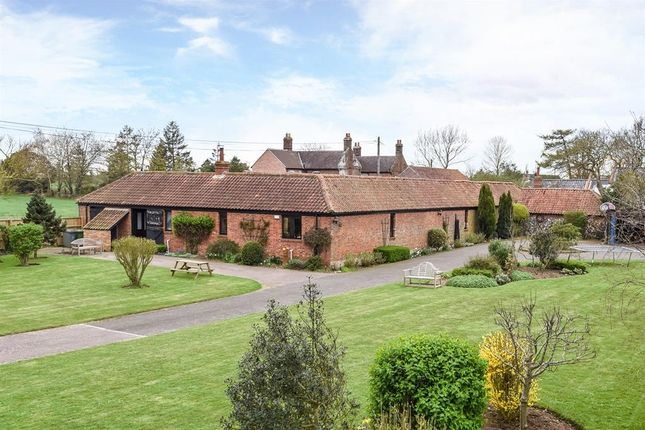 Thumbnail Barn conversion for sale in Panxworth Road, South Walsham, Norwich