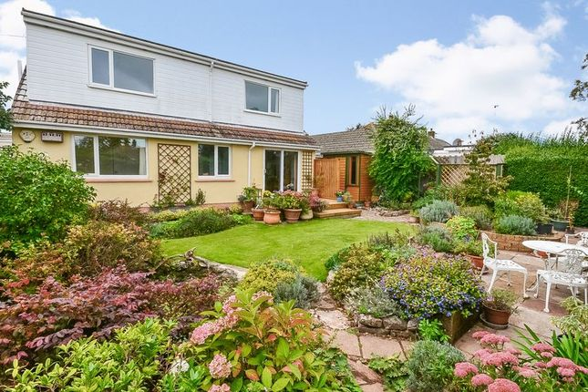 Thumbnail Bungalow for sale in Smardon Avenue, Brixham