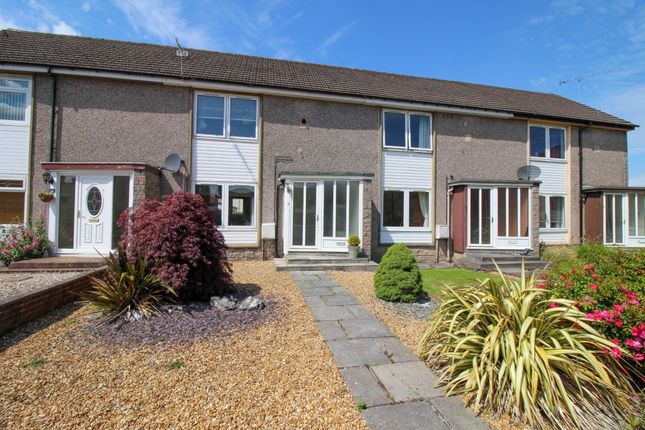Thumbnail Terraced house to rent in Grange Avenue, Falkirk