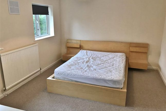 Thumbnail Semi-detached house to rent in Cabell Road, Guildford, Surrey